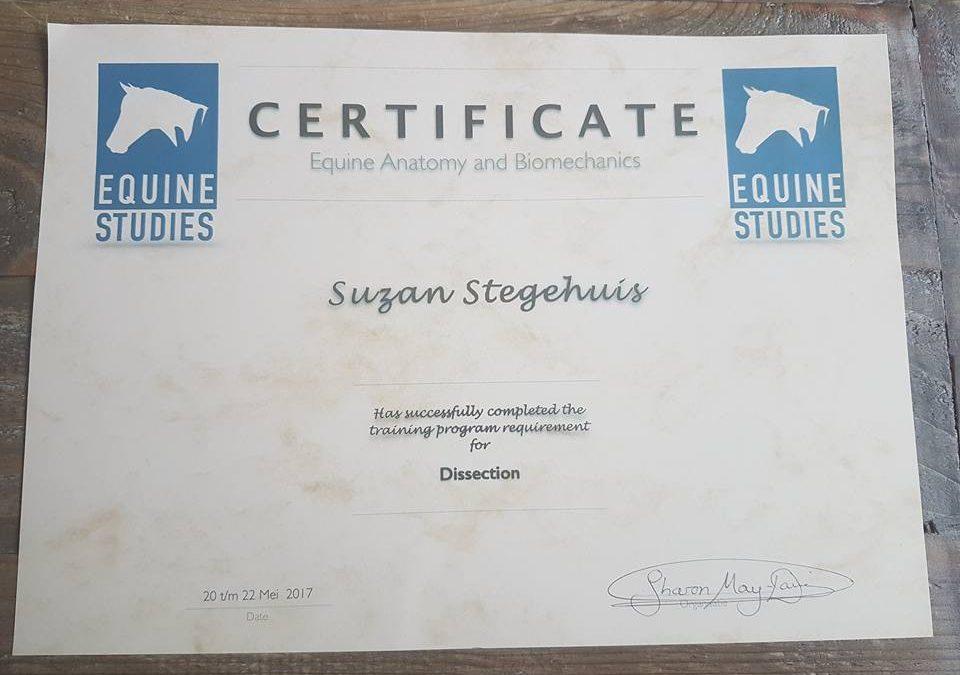 3 enerverende dagen dissectie paard met Sharon May-Davis